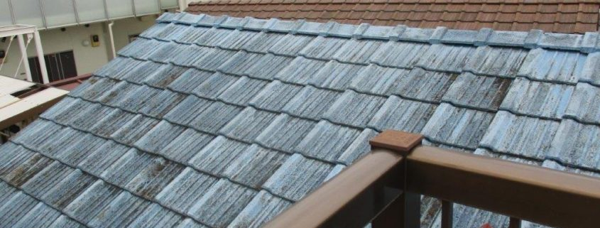 劣化した屋根の現場調査